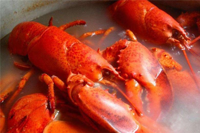 金湖龍蝦加盟