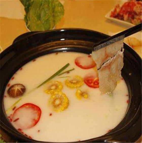猫贝儿斑鱼火锅